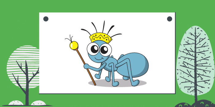 How Important Is It To Control Ants In Your House?
